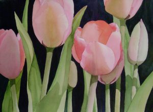 tulips-are-for-touching